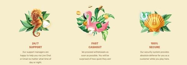 Paradise Casino support, deposit, VIP offers